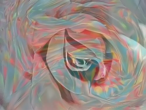Kaleidoscope Rose © lynette sheppard